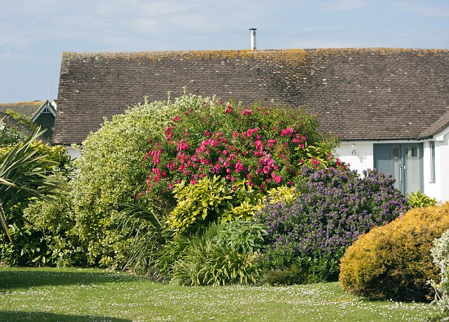 Creating the perfect rockery feature in your garden